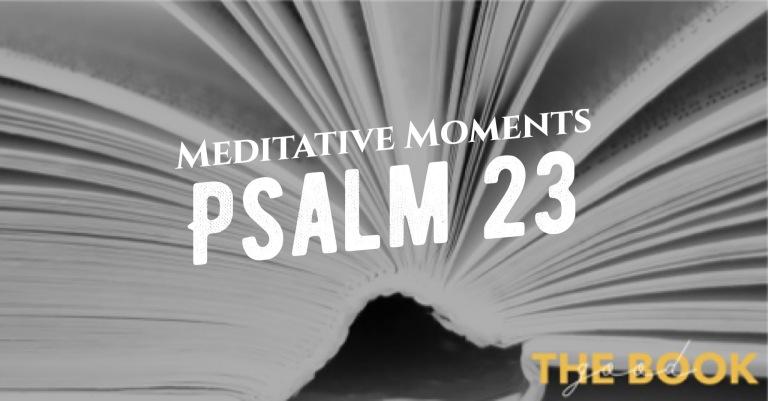 Meditative Moments Day 5 - Psalms 23 #TheGoodBook - Pastor