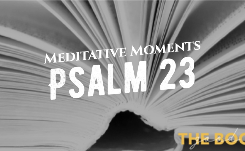 Meditative Moments Day 2 – Psalms 23 #TheGoodBook
